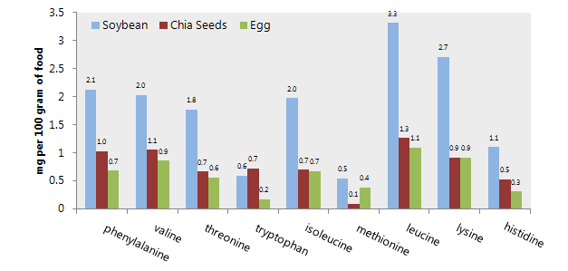 Chia seed protein comparison with soy protein and egg