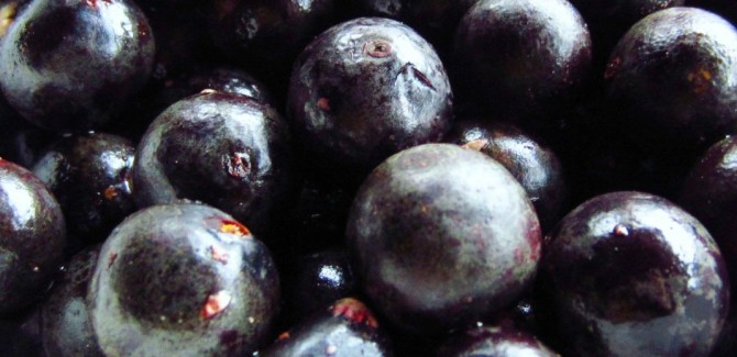 Health benefits of Acai Berry