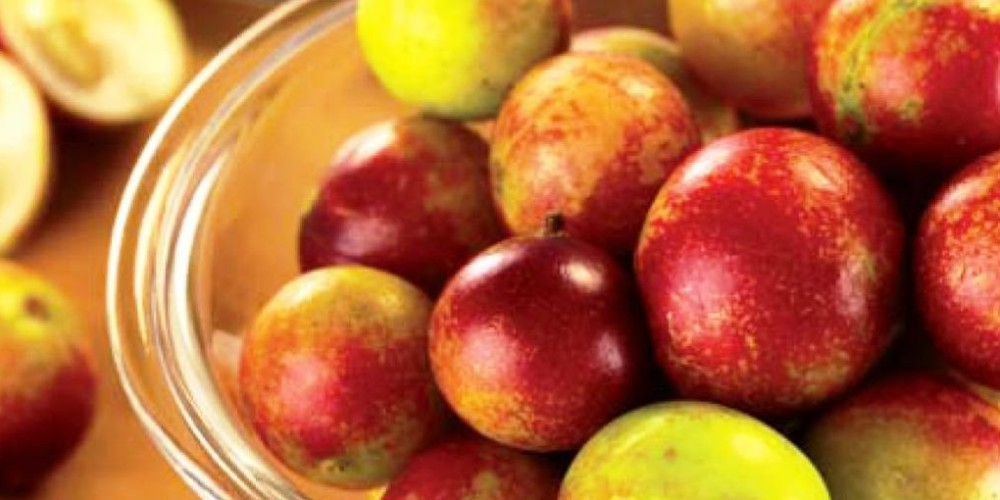 Health benefits of camu camu berry