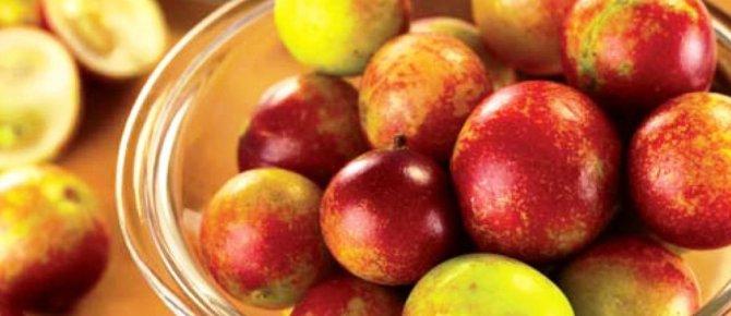 Health benefits of camu camu berry