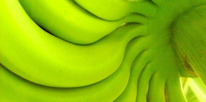 Health benefits of green banana