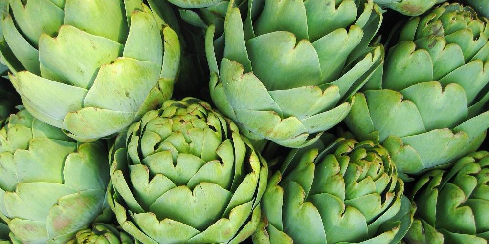 health benefits of artichoke