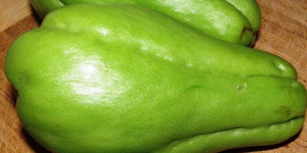 Health benefits of Chayote
