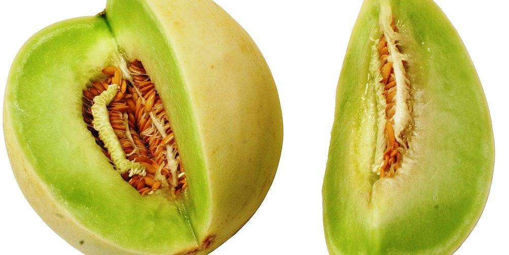 health benefit of honeydew melon