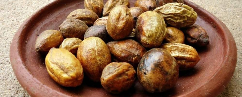 harad herb benefits