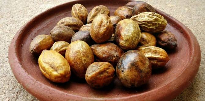 Health benefits of Haritaki / Terminalia chebula