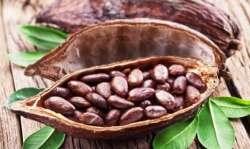raw cacao benefits