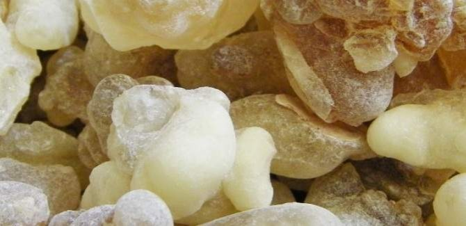 Health Benefits of Frankincense