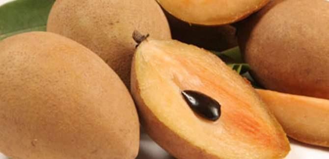 Health benefits of Sapodilla