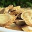 Health benefits of Astragalus