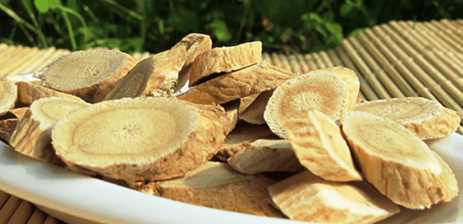 Health benefits of Astragalus
