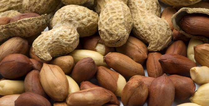 You wont mind working for peanuts after reading this