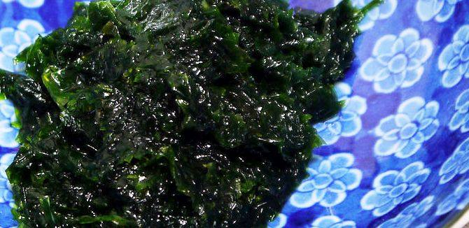 Health benefits offered by green seaweed – Aonori
