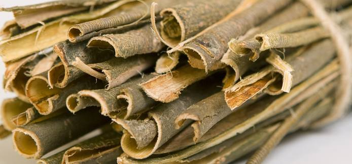 Nature's Aspirin – White Willow Bark benefits