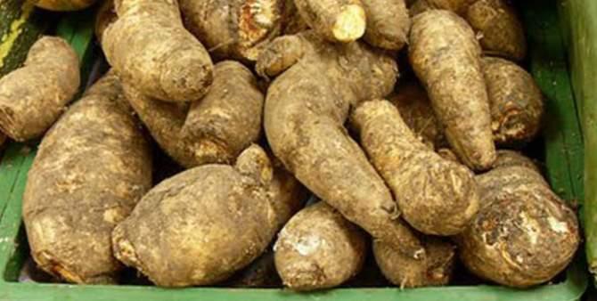 health benefits of arracacha