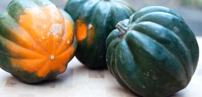 Health benefits of Acorn squash
