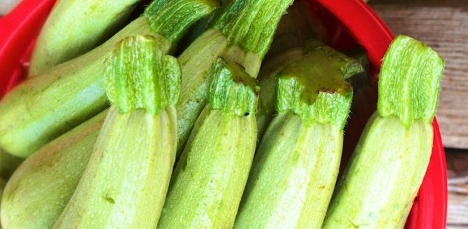9 benefits of Marrow you should know