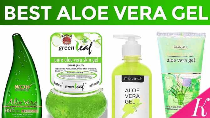 Find Out the 10 Best Aloe Vera Gel in the World