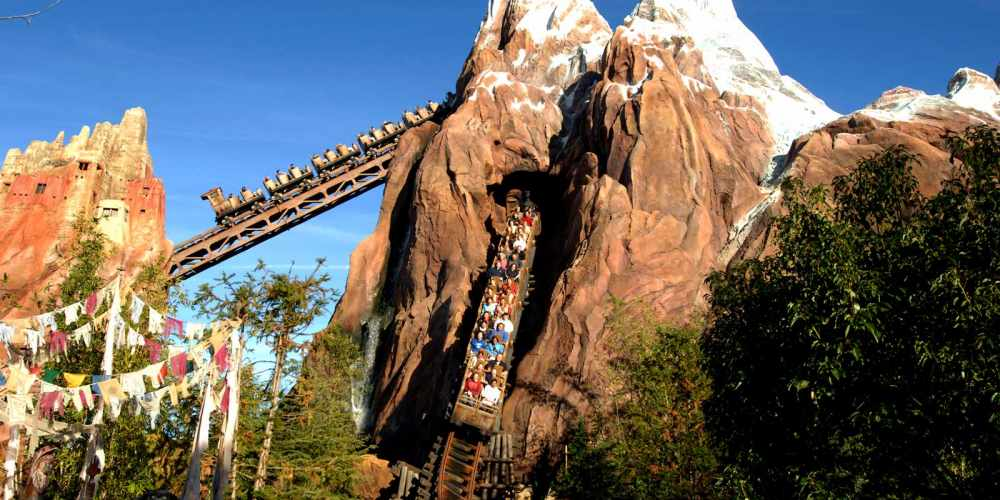 Best 5 Rides Animal Kingdom