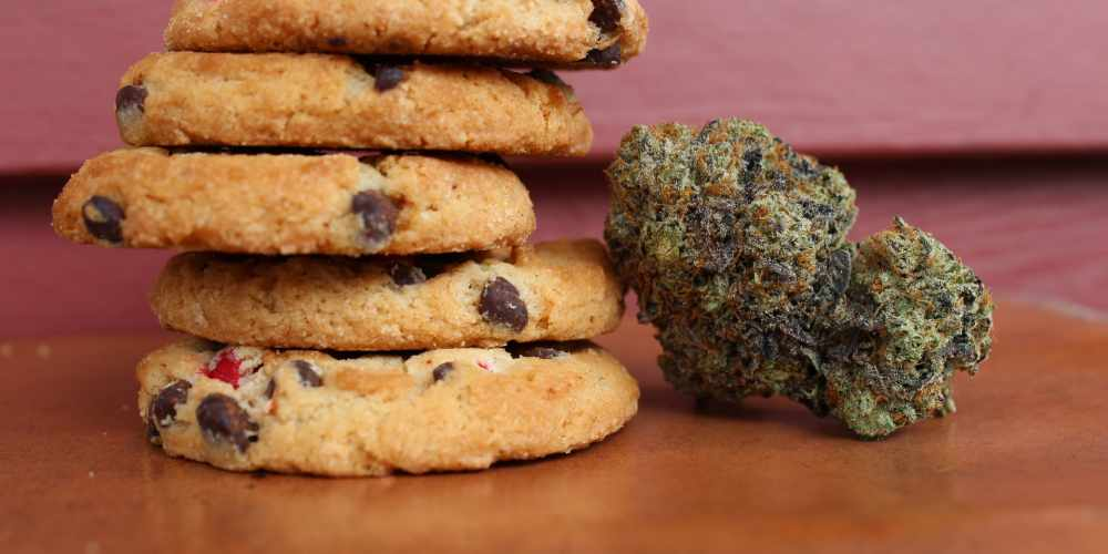 Your guide to Baking the Perfect CBD Cookies